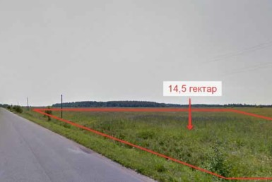 14,5 гектар, Лужская обл. д. Большая Дивенка